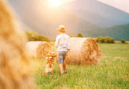 Boy walks with beagle dog on green mountain meadow with haystacks