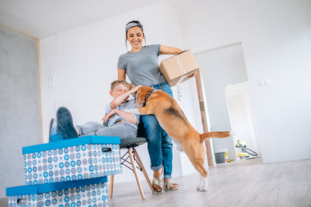Funny scene with beagle dog - family move in new apartment
