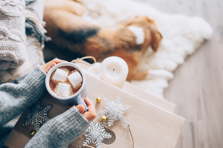 Woman hands with cup of hot chocolate close up image; cozy home; sleeping dog; christmas time Stockfoto