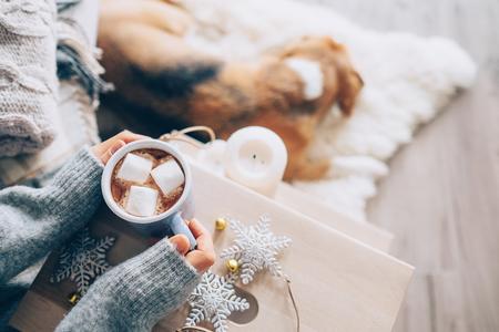 Mãos da mulher com copo de chocolate quente close up image; casa aconchegante; cachorro dormindo; época de Natal