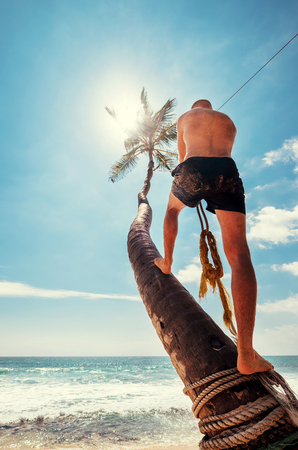 Man climb on palm tree for swing on the beach swing Stock Photo