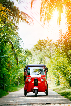 Red tuk-tuk under the palm trees on the country road