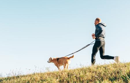 Morning Canicross exercise. Man runs with his beagle dog. Standard-Bild - 112309472