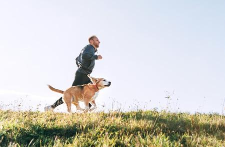El hombre corre con su perro beagle. Ejercicio de Canicross matutino.