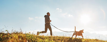 Man runs with his beagle dog at sunny morning.