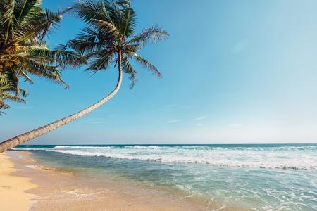 Tropical island beach white sandy classic view ocean  view Stock Photo - 116332881