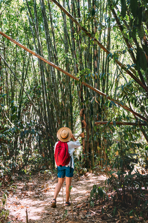 Woman with backpack on trek through jungle stopping looking bamboo forest top branches 版權商用圖片