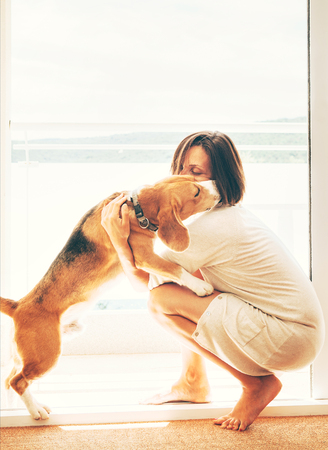 Tender scene on sunny terrace: beagle dog kisses its owner. Pets at home concept image.