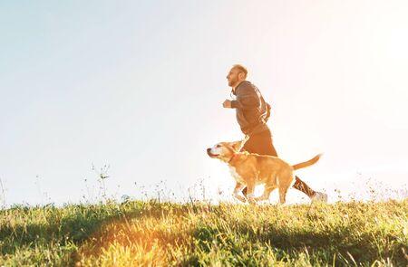 Man runs with his beagle dog. Morning Canicross exercise Standard-Bild - 127266121