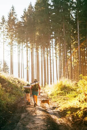 Mother and son with their family member beagle dog walking by the trekking path with backpacks under the evening sun light. Standard-Bild - 132028442
