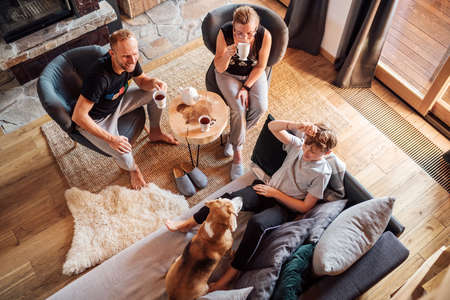 Father, mother and son at the home living room. Boy lying in comfortable sofa and stroking their beagle dog and smiling. Peaceful family moments concept image. Cozy family tea time. 免版税图像