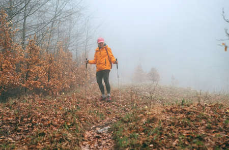 Dressed bright orange jacket young female backpacker walking by the touristic path using trekking poles in autumn foggy forest. Active people and autumnal moody vacation time spending concept image.