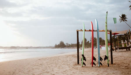 Four colorful surfboards standing on the sandy wide beach prepared for renting service, Weligama, Sri Lanka. Standard-Bild