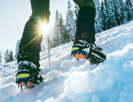 Close up shot of mountain boots with crampons and snow gaiters with backlight sun beams and snowy spruces on background. High mountaineer pounding boots in hard snow ascending UP on the summit. Standard-Bild