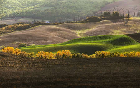 Early morning beautiful Tuscany hills landscape view with plowed and green grass covered wavy fields. Sunrise light covering the meadows and fields making a magic light-shadows playing.