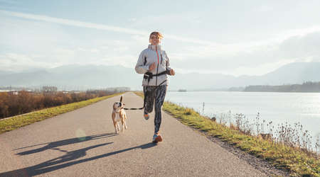 Morning jogging with a pet: a female running together with her beagle dog by the asphalt way along lake with a foggy mountain landscape. Canicross exercises and active people and a dog concept image.