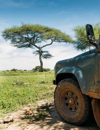 Safari Off-road large vehicle dirty front wheel with Lonely tree with beautiful wide-angle bright blue sky. Tarangire National Park, Tanzania's Manyara Region. Standard-Bild