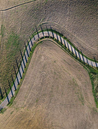 Top aerial view road surraunded with cypresses running in plowed field. Classical Tuscany views and traveling concept.