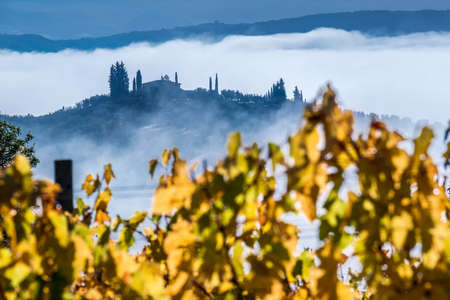Unbelievable early first sunrise rays foggy landscape view agriturismo farmland covered with morning mist. Yellow autumn vineyard leaves rows view. Agriculture and traveling through Italian Tuscany. 免版税图像