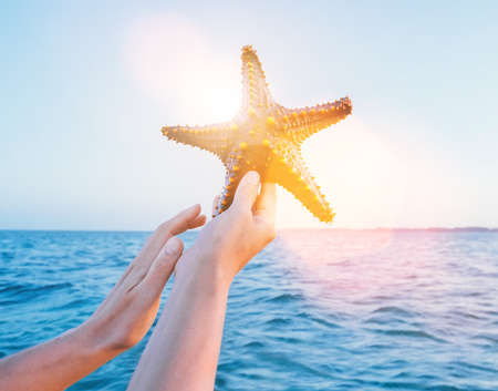 A Female's hands showing a starfish holding a live, large beautiful, and bright ocean inhabitant with sea waves background on Zanzibar island. Exotic vacation concept image.
