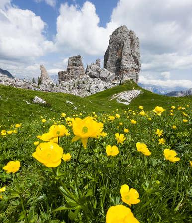 Fresh green grass and yellow flowers landscape photo with rock formation Cinque Torri, Cinque Torri di Averau peaks 2361m in Belluno province, northern Italy. Vertical Shot. 免版税图像