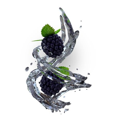Blackberry falling with water, 3d illustration