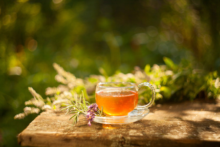 catnip: green tea in beautiful cup