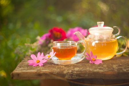 wild marjoram: green tea in beautiful cup