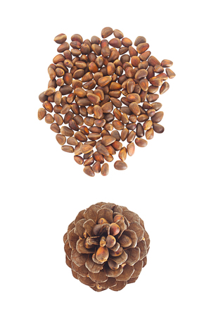 pine nuts and a pine cone on a wooden table
