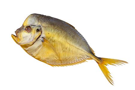 Hot smoked Moonfish fish  on the white
