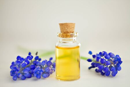 fragility: Essential oil of a muscari flower on a table in a beautiful bottle