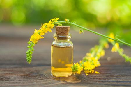 Essence of flowers on table in beautiful glass Bottle Stok Fotoğraf
