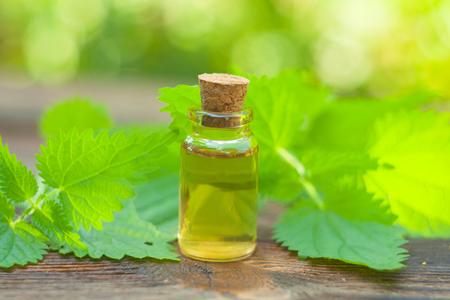 nettle essential oil in a beautiful bottle on the table Standard-Bild