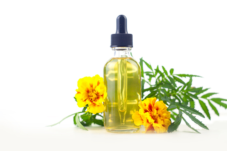 marigold essential oil in a beautiful bottle on the White background Standard-Bild