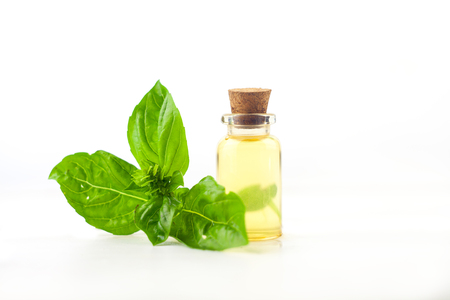 basil essential oil in a beautiful bottle on the White background