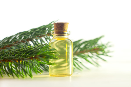 Essence of pine on a table in a beautiful glass jar Stok Fotoğraf - 122573322