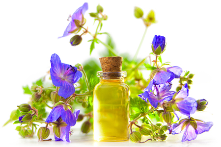 meadow geranium essential oil in a beautiful bottle on the White background 免版税图像