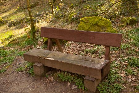 wooden bench in  public park in spring at sunset Banque d'images - 129374087