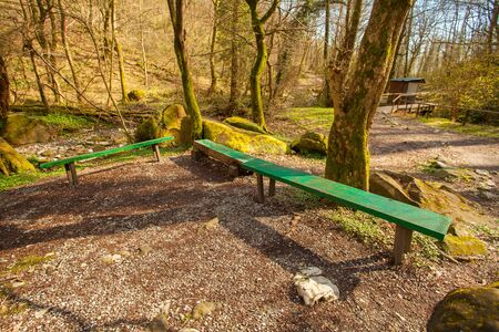 wooden bench in  public park in spring at sunset Banque d'images - 129374157