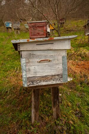 bee passeka on a village farm in spring Banque d'images - 129374587
