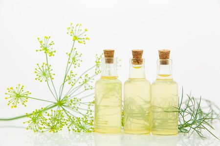 dill essential oil in a beautiful bottle on the White background