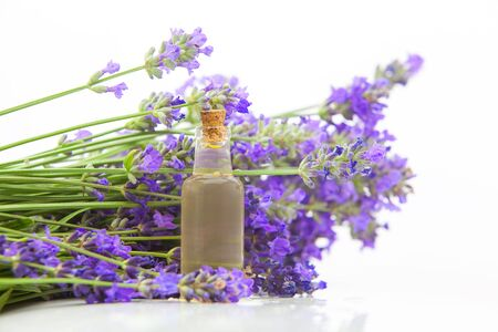 lavender essential oil in a beautiful bottle on the White background Standard-Bild