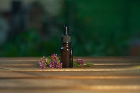 thyme essential oil in a beautiful bottle on the table Standard-Bild
