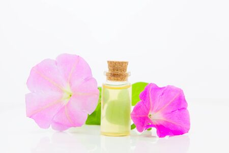 mallow essential oil in a beautiful bottle on the White background Standard-Bild