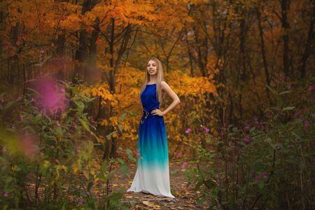 beautiful woman posing in autumn in the forest