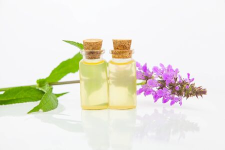 marsh woundwort essential oil in a beautiful bottle on the White background