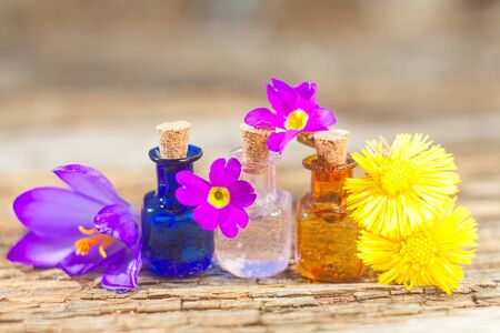 crocus essential oil in a beautiful bottle on the table Imagens
