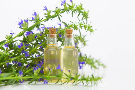 hyssop essential oil in a beautiful bottle on the White background