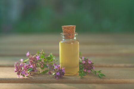 thyme essential oil in a beautiful bottle on the table Imagens