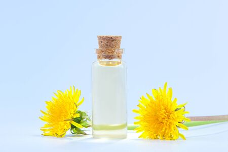 dandelion essential oil in a beautiful bottle on the White background
